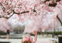 春天裡,去旅遊,可以拍些什麼內容?