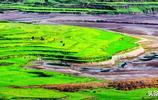 洞溪壩,重慶另一鮮為人知的避暑勝地,釣魚,露營,還有奇特景觀