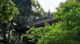 成都最值得一去的公園,擁有罕見的古代園林景觀,門票只要兩元