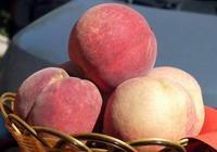 """這""""果子""""一個重達2斤,連續10年被選入國宴,齊天大聖最愛"""