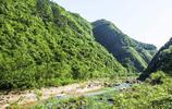 醉山野原生態度假區