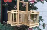 木工出身的我,自己做了一個蟈蟈籠,大家看看手藝如何?