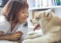 狗狗不覺得主人是同類,但是並不阻礙它愛你,甚至把你當父母看