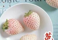 你的姓氏名字壁紙 本期以甜美粉色草莓愛情為主題 可還行