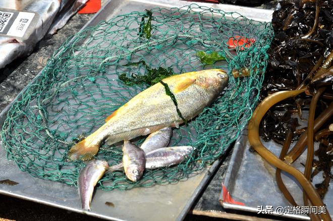 實拍 青島城中集市海鮮10元8斤 物美價廉購買人群絡繹不絕