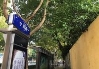 寧海路,這裡藏著所有南京的人青春!