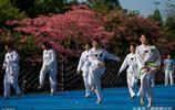 寒潮來臨,廣州大學校園內的絲木棉迎風盛開,網友說:最美校園