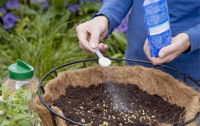 養花選擇花肥很重要,尤其是新手養花,不會選,準備這3種就夠了