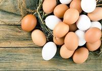 土雞蛋、烏雞蛋、洋雞蛋,這3種雞蛋在營養上有什麼差別嗎?貴的雞蛋真的就好嗎?