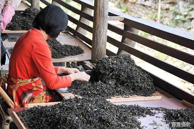福建下梅村,武夷山下最古老的茶村,晉商萬里茶路的起點