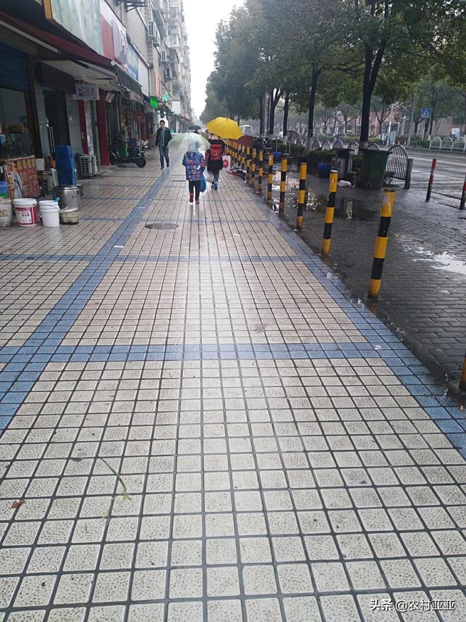 實拍!一個溼漉漉的上海,年後26天,只見過兩天太陽