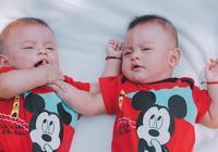 雙胞胎孩子怎麼養?跟動物海豚學會這幾招