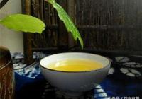 發酵晒乾後的茶葉渣才可以用來養花,直接使用危害大