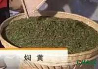 黃茶,中國茶類六大類之一,它的特點是什麼?