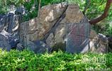"""藏在居民小區內的這座濟南名山,""""齊煙九點""""之一,你爬過嗎?"""