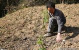 安康55歲單身漢獨處深山 住土坯房種地養牛養土蜂 瀟灑自在樂開懷