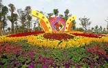 風景圖集-柳州 柳州園博園
