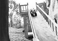 呆萌國寶的生活日常,熊貓的世界你懂麼