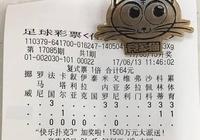 「專欄」楊震17085期任九實單:挺國足!
