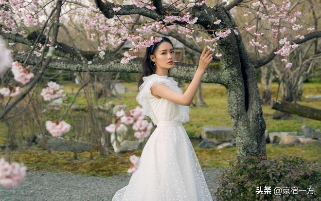 美人圖:李沁清純可愛,仙氣甜美,高清壁紙