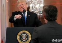 特朗普指責CNN記者說\