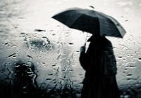 攝影出聯:飲一壺秋雨道幾分憂傷(誠邀對聯)