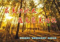 西安向東40分鐘,在臨潼山裡遇見最美的秋天~