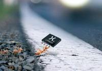Nexperia宣佈推出尺寸減小80%的汽車用功率MOSFET封裝