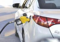 開車怎麼才能省油?學會這幾個開車技巧,居然可以省油50%