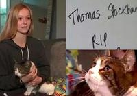 貓咪葬身火海 全家悲痛 沒想到一封陌生人的來信讓一家人感動不已