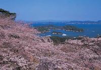 日本人是怎麼評論中國遊客的,看完之後你還會去日本嗎
