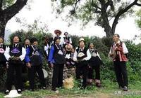 獨特的滇南彝族四大聲腔:彝族四腔