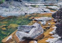 實拍銅鈴山國家森林公園,溫州原來不只有皮革廠,還藏著個九寨溝
