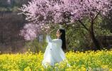 山裡的春天,總是與眾不同,美的讓人窒息