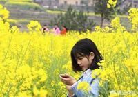 """日本鍾愛的""""無雙""""稱號由來已久,《九州劫》中的無雙們表現如何?"""