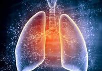 """肺病的""""大救星""""來了,早晚喝一杯,清肺潤肺,養出乾淨肺!"""