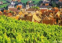 法國葡萄酒與加州葡萄酒的區別