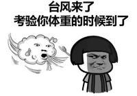►快看,颱風來啦!