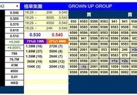 新股暗盤 | 植華集團(01842)暗盤收漲8% 每手賺160港元