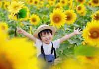 日本攝影師媽媽給兒子拍照,拍出了童話世界,太暖心了