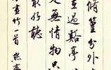 行書古詩詞,中國風中國情,胡鐵軍作品:墨梅,畫竹,上太行