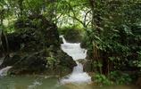 氣勢磅礴 蔚為壯觀 世界第四大跨國瀑布——德天跨國大瀑布之行