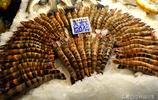 青島大鮁魚熱銷33元一斤 送老丈人需求量大 200塊錢看能買多大個