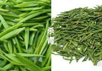 什麼樣的綠茶才是好綠茶?