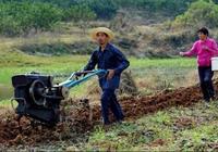 農村養殖真的可以發家致富嗎,來看看這個案例,真實的大喜大悲
