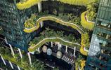 【未來綠色建築】綠色與城市融合,看看新加坡是怎麼做的