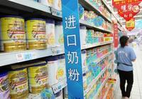 國內奶粉需求暴增!飛鶴、君寶樂等國產奶粉要打翻身仗