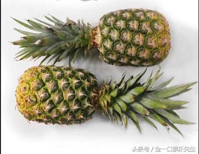 立秋過後天氣轉涼易乾燥,多吃水果好處多,比水果店便宜好多