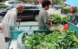 72歲農村老人進城賣野菜,不用稱量論捆賣,城裡人搶著買