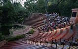 亞洲遊玩筆記 新加坡夜間野生動物園旅遊 觀察野生動物的夜間生活